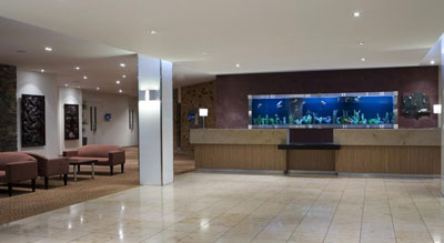 Lobby at Holiday Inn Auckland Airport