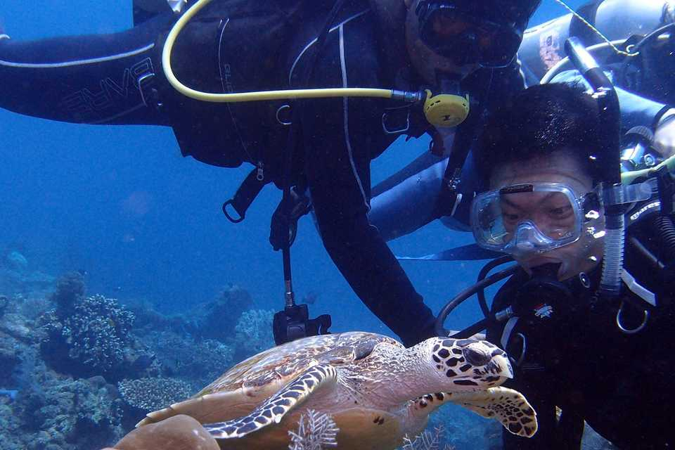 Get a PADI diving certificate in Bali