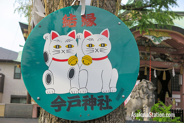 An image of two maneki-neko at Imado Jinja