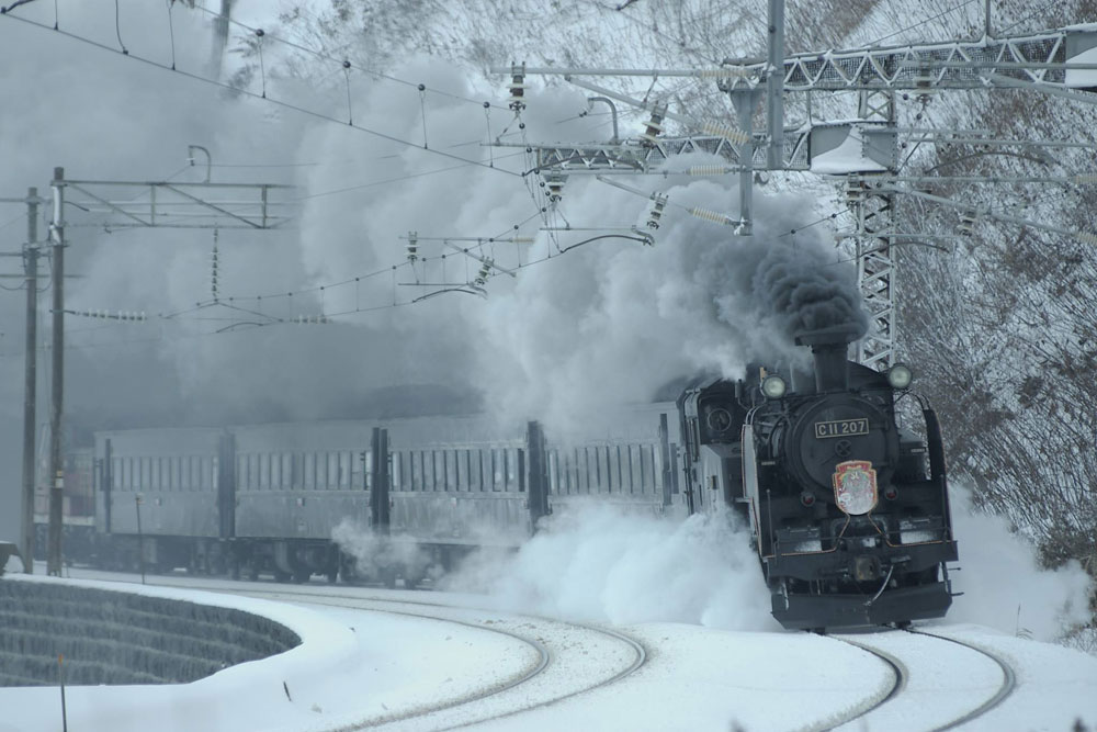 Next summer will also see a revival of the C11 207 steam locomotive on the Tobu Kinugawa Line