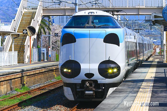 Panda-themed Kuroshio Limited Express
