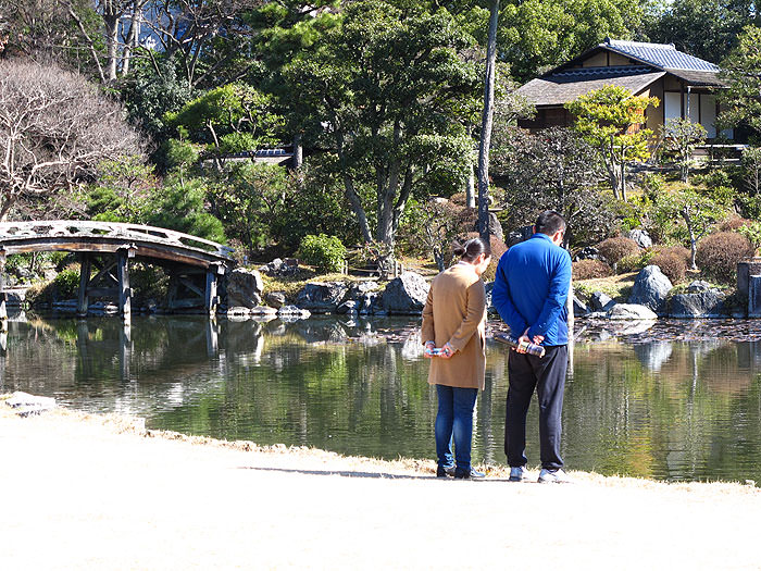 Visitors admiring the pond's koi carp