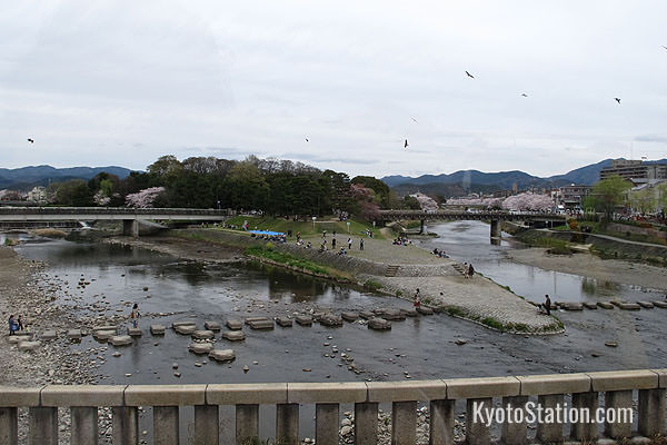The Kamogawa Delta