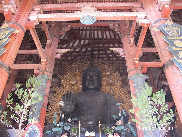The Daibutsu statue sits in an attitude of enlightened meditation