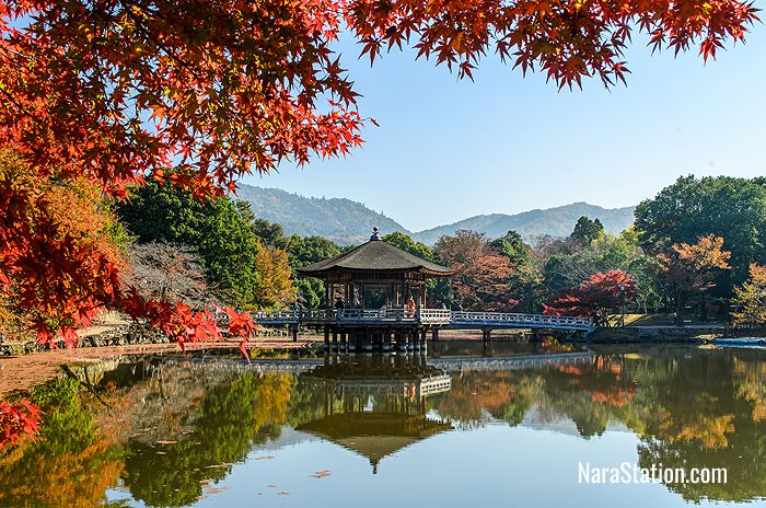 How to Get from Nara Station to Nara Park