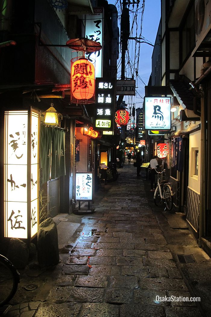 Hozenji Yokocho was made famous by the 1940 novel Meoto Zenzai by Sakunosuke Oda