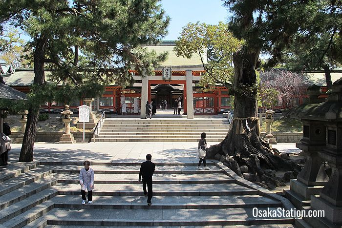 The entrance to Sumiyoshi Taisha Shrine