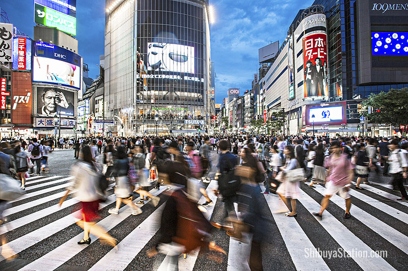 Shibuya Crossing is famous for its large video screens and garish signs