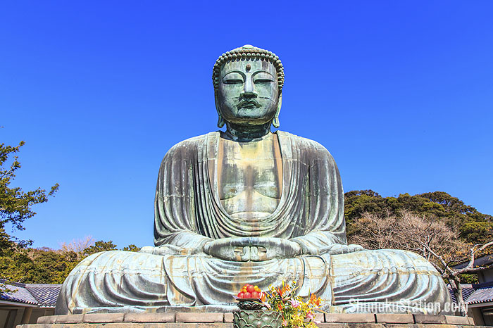 The Great Buddha watches over Kotoku-in, one of the many temples of Kamakura