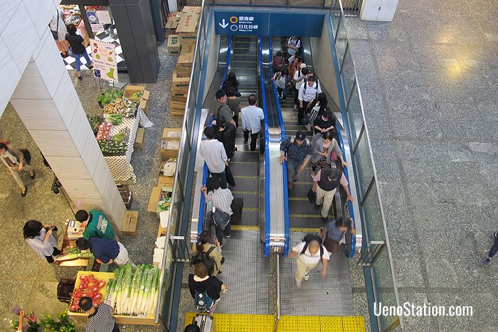 Escalators for Ueno Subway Station