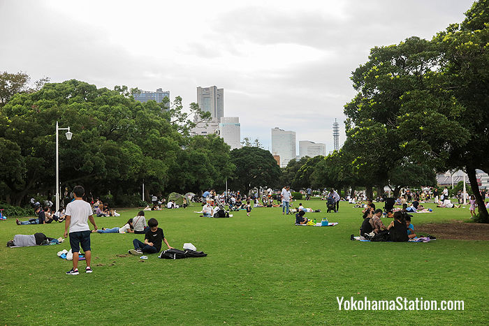 There is a large lawn in the park which can be used for sunbathing or picnicking